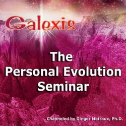 The Personal Evolution Seminar